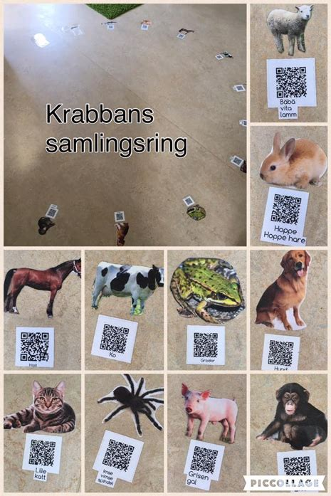 QR codes with animal sounds