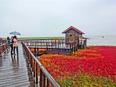 Red Beach in Panjin, China | Most Beautiful Places in the
