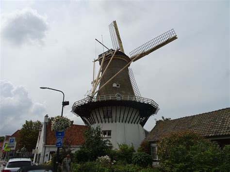 The windmill is in a housing estate! - Review of Wassenaar