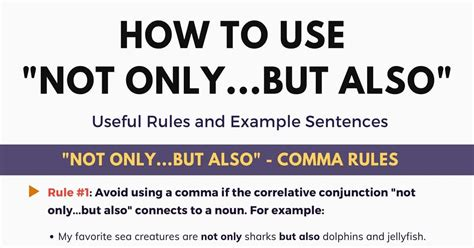 Not Only But Also: Important Rules and Example Sentences